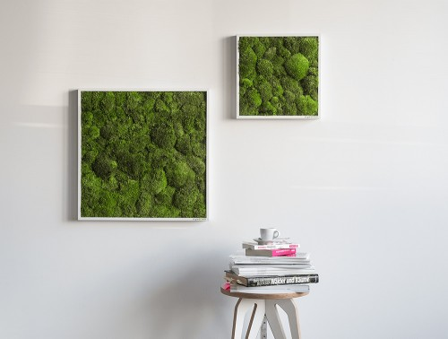 StyleGreen-Pole-Moss-Frames-Wall-Mounted-in-Two-Different-Sizes