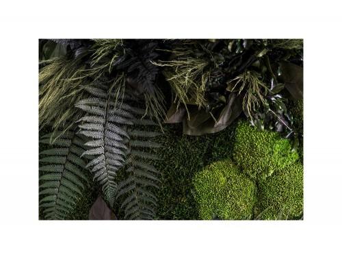 StyleGreen-Preserved-Plant-Island-Wall