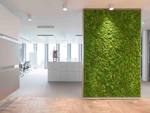 StyleGreen-Preserved-Pole-Moss-Green-Wall-Displayed-in-Showroom