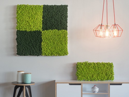StyleGreen-Reindeer-Moss-Frames-Wall-Mounted-and-Displayed