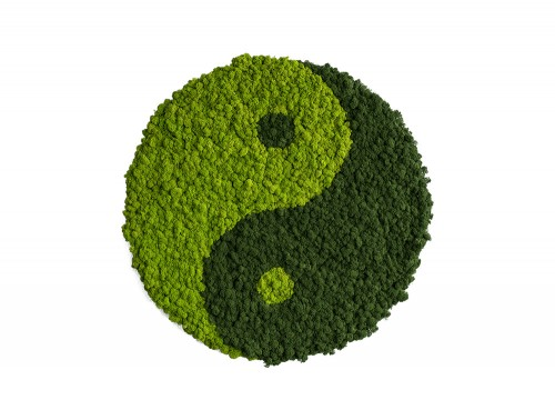 StyleGreen-Yin-Yang-Symbol-Moss-Screen-with-Reindeer-Moss