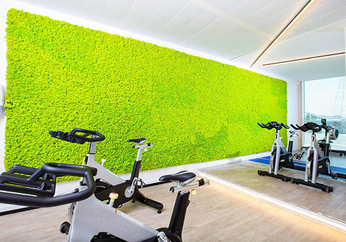 green wall in gym