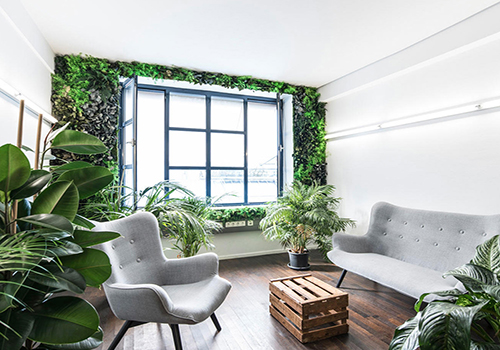 Jungle green wall in waiting room