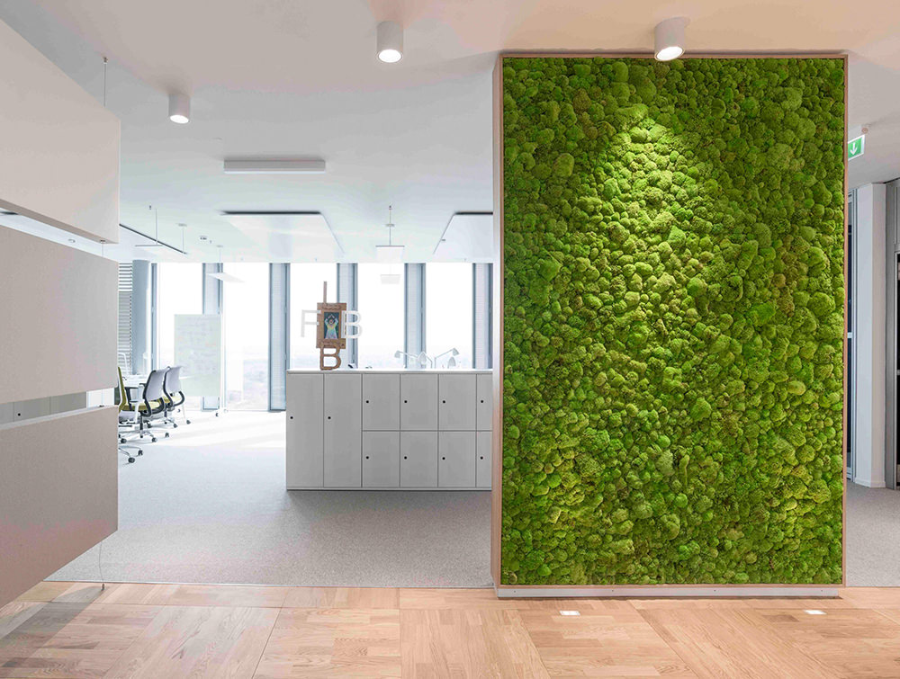 Green wall to reduce noise in office