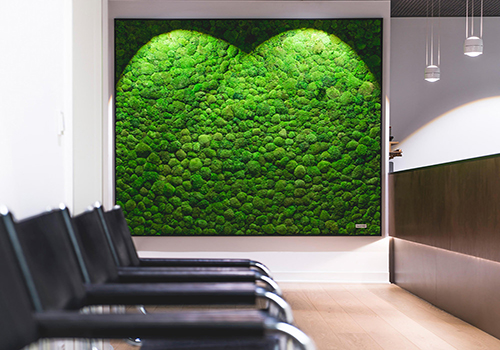 Green wall in office waiting room