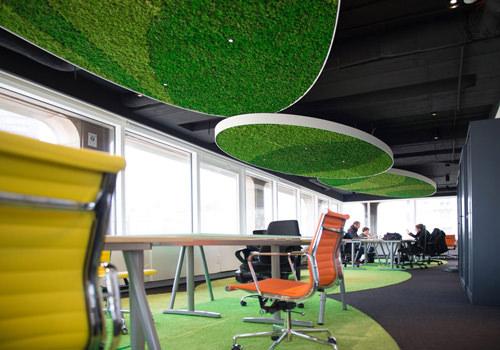 Green Mood Green Walls Lichen Moss in Visiyou Office 500x350
