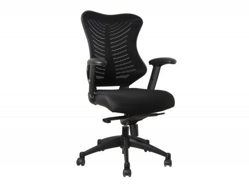 SPINE Delux Spine Task Chair in Black