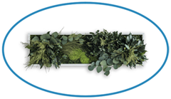StyleGreen Island Plant Frame - Top Description Image
