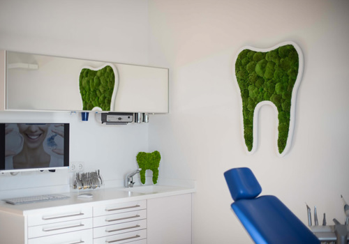 Tooth Plant Pictograms in Dentist Office-500x350