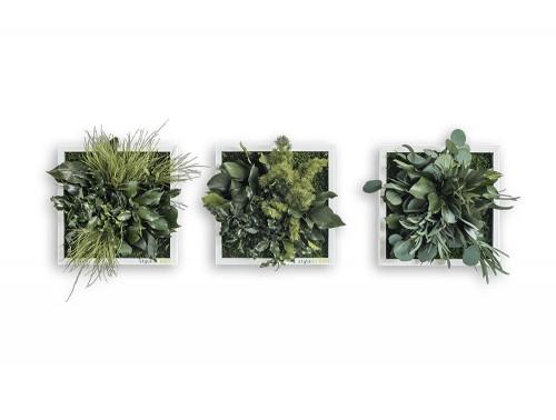 styleGreen-Island-Plant-Frame-Set