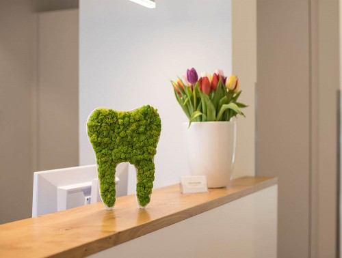 styleGreen-Pictogram-Green-Moss-Dental-Tooth-Sign-on-Reception-Desk