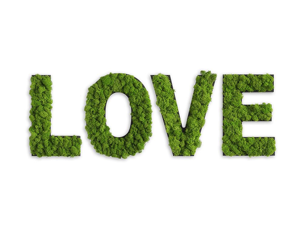 styleGreen-Pictogram-Green-Moss-Love-Sign-with-Reindeer-Moss
